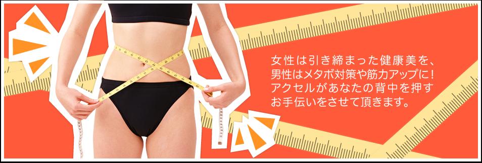 女性は引き締まった健康美を、男性はメタボ対策や筋力アップに!アクセルがあなたの背中を押すお手伝いをさせて頂きます。